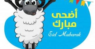 Carte Aid humour rcs eid