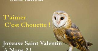 Message st valentin rigolo et sms saint valentin marrant