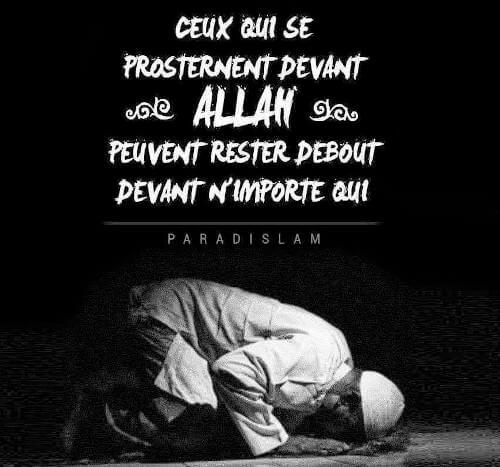 Sms Inchallah Modèles De Messages Pour Dire Inch Allah