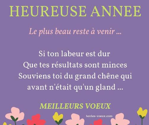 Bonne Année Citations Humour Pour Des Messages De Voeux