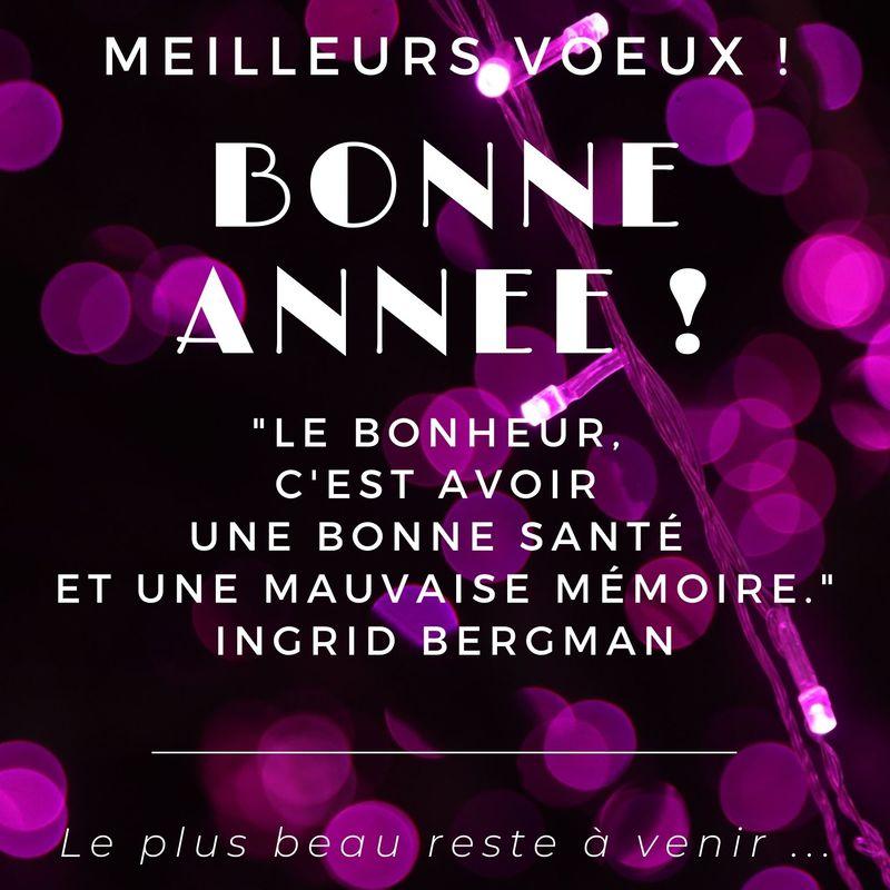 Blague Bonne année pour souhaits de Joyeuses fêtes